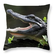 Say Aah - American Alligator Throw Pillow