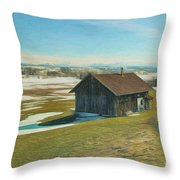 Say Goodbye To The Winter Throw Pillow