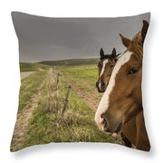 Say There Throw Pillow