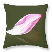 Saying Goodbye To Summer Throw Pillow