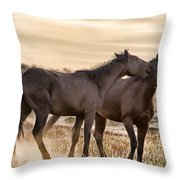 Saying It Softly Throw Pillow