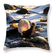 Half Shell On Ice Throw Pillow
