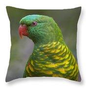 Scaly-breasted Lorikeet Australia Throw Pillow