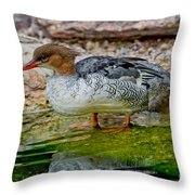Scaly-sided Merganser Hen Throw Pillow