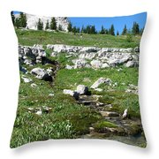Scapegoat Amphitheater And Spring Throw Pillow