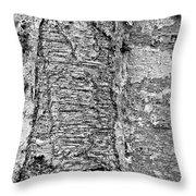Cicatrix Throw Pillow