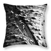 Laceration Throw Pillow