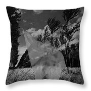 Scarf In The Winds In Black And White Throw Pillow
