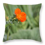 Scarlet Avens Orange Wild Flower Throw Pillow