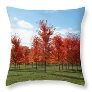 Scarlet Formation Throw Pillow