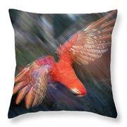 Scarlet Macaw Flying Amazon Basin Peru Throw Pillow