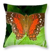 Scarlet Peacock Butterfly Throw Pillow