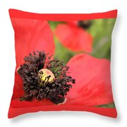 Scarlet Poppy Macro Throw Pillow