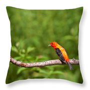Scarlet Tanager On Snag Throw Pillow
