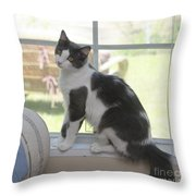 Scarlow Sitting In The Window Throw Pillow