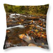 Scattered Leaves Throw Pillow