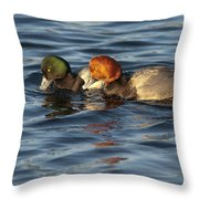 Scaup And Redhead Couple  Throw Pillow