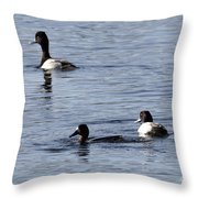 Scaup Ducks In The Spring Throw Pillow