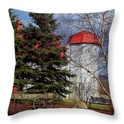 Scene In Vermont Throw Pillow