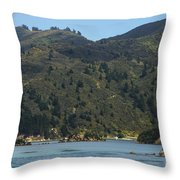 Scenery On Cook Strait Throw Pillow