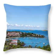 Scenery Throw Pillow