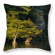 Scenic Beavers Bend Throw Pillow