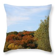 Scenic Hwy Throw Pillow