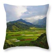 Scenic Kauai Throw Pillow