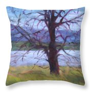 Scenic Landscape Painting Through Tree - Spring Has Sprung - Color Fields - Original Fine Art Throw Pillow