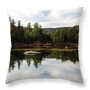 Scenic Lily Pond Throw Pillow