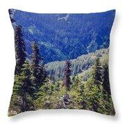 Scenic Mountain Valley Throw Pillow
