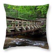Scenic Passageway Throw Pillow