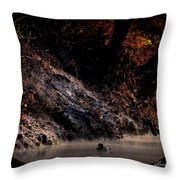 Scenic Sucarnoochee River - Wood Duck Throw Pillow