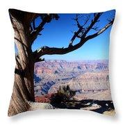 Scenic Survival Throw Pillow