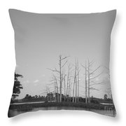 Scenic Swamp Cypress Trees Black And White Throw Pillow