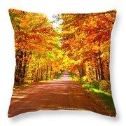 Scenic Tour Throw Pillow