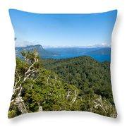 Scenic Urewera Np With Lake Waikaremoana In Nz Throw Pillow