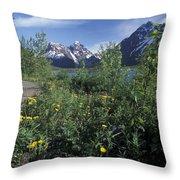 Scenic View In Autumn Of Eklutna Lake & Throw Pillow
