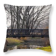 Scenic View In Madison Wisconsin Throw Pillow
