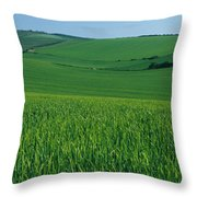 Scenic View Of A Field, South Downs Throw Pillow
