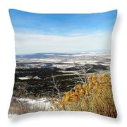 Scenic Vista Throw Pillow