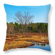 Scenic Winchester Throw Pillow