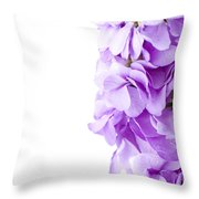 Scented Stocks Throw Pillow