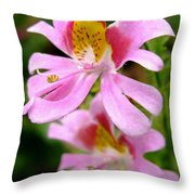 Schizanthus Named Angel Wings Throw Pillow