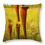 Schnell's Pitcher Plant Throw Pillow
