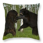 School In Session Throw Pillow