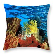 School Of Fishes Throw Pillow
