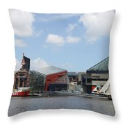 Schooner Comming Back To Baltimore Harbor Throw Pillow