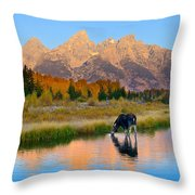 Schwabacher Morning Light  Throw Pillow