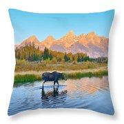 Schwabacher Morning Travels Throw Pillow